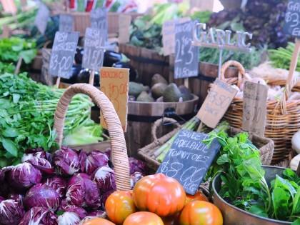Le panier du marché selon les saisons